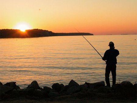 Тем временем, богатые ловят рыбку в свое удовольствие