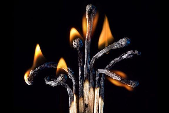 Огненные Шедевры от Станислава Аристова - дерево