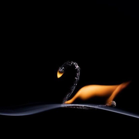 Огненные Шедевры от Станислава Аристова - лебедь