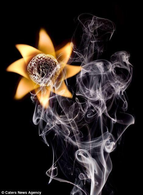 Огненные Шедевры от Станислава Аристова - цветок