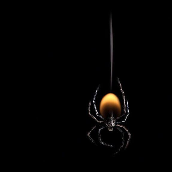 Огненные Шедевры от Станислава Аристова - паук