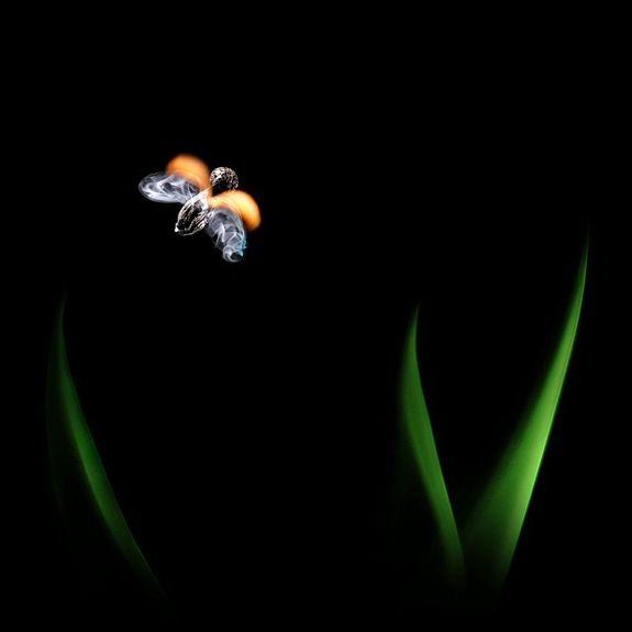 Огненные Шедевры от Станислава Аристова - пейзаж