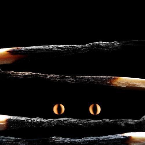 Огненные Шедевры от Станислава Аристова - котик