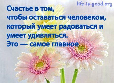 Позитивные цитаты в картинках