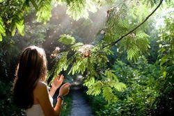 5 уроков успеха, которые дарит нам природа