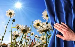 4 признака оптимиста