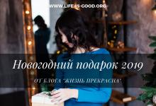 """Новогодний подарок 2019 от блога """"Жизнь Прекрасна"""""""